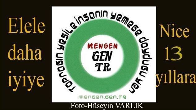 Mengen.Gen.TR 13 YAŞINDA