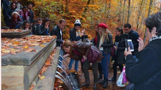 Yedigöller Milli Parkı'na ziyaretçi akını sürüyor(70.Yıl)