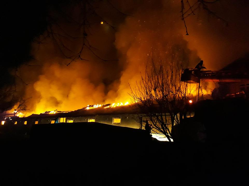 Mengen'de 12600 Civciv çiftlikle beraber yandı