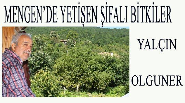 SİNİRLİ OT