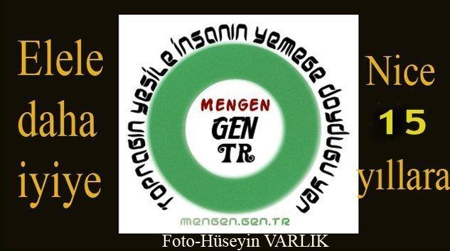 Mengen.Gen.TR 15 YAŞINDA