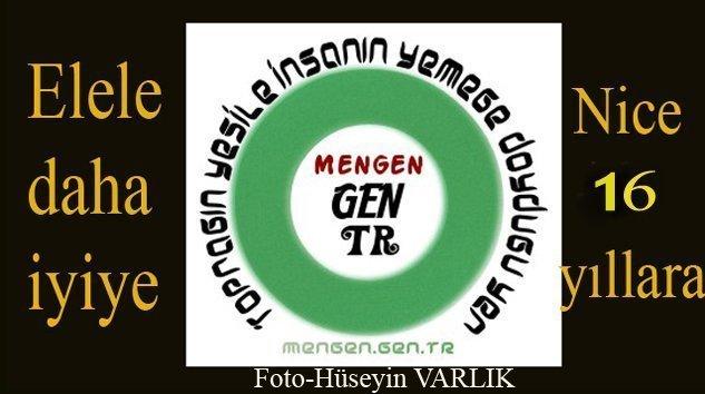 Mengen.Gen.TR 16 YAŞINDA