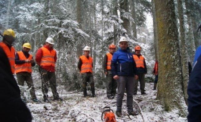 Mengen Orman İşletmede Tatbikat