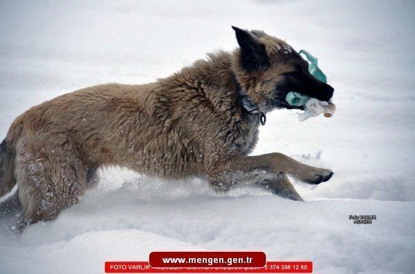 Mengen'den Kar Görüntüleri