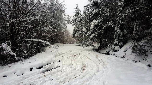 Yeni Yıldan Kış Manzaraları